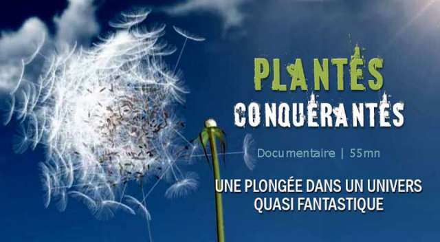 1000x550_video-plantes-conquerantes_pf