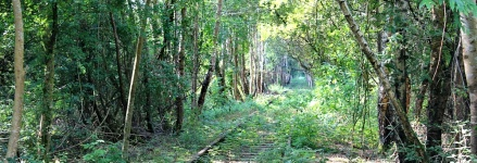b07-railway-track-to-nowhere-ruth-walking-the-coast