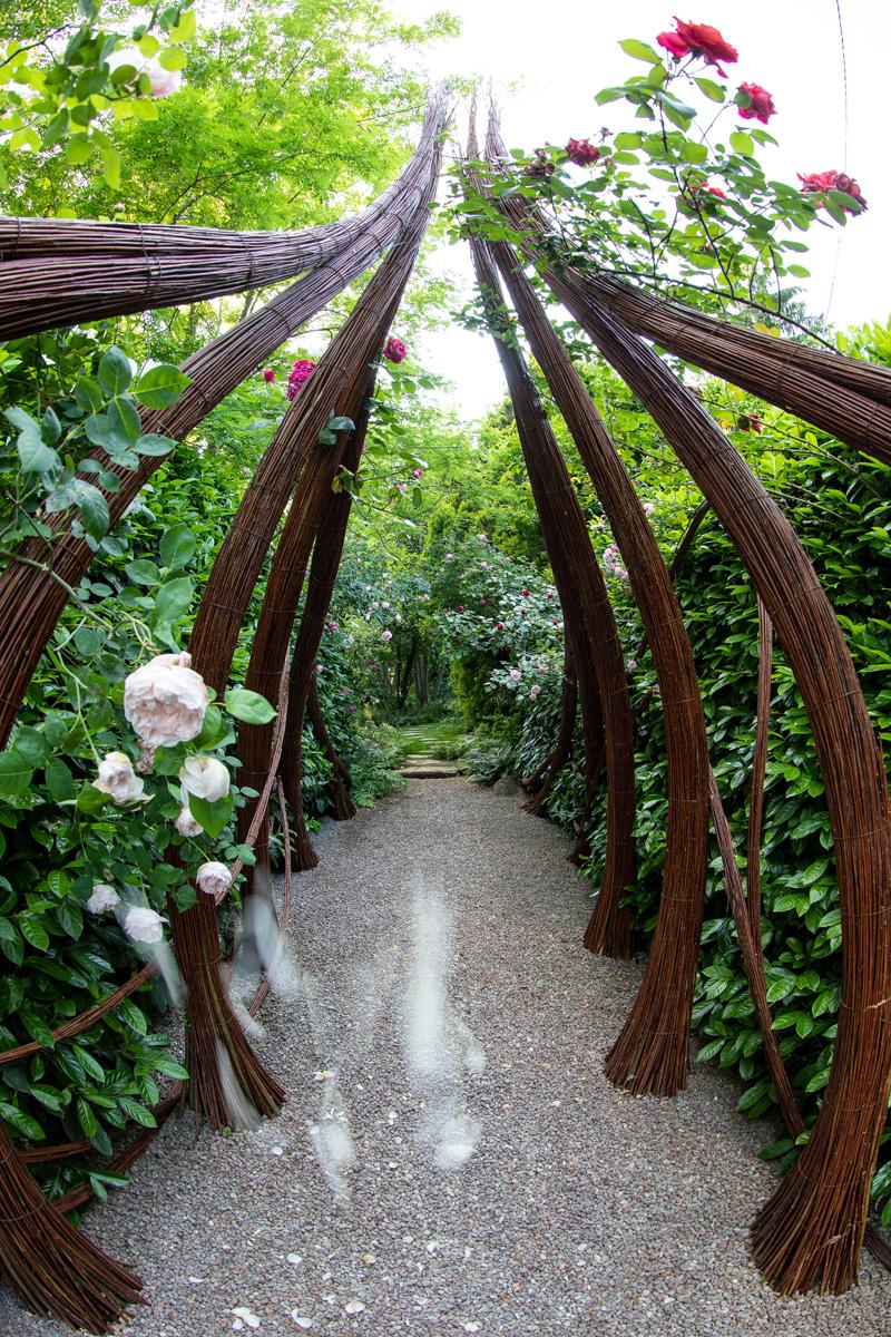 Piccoli Alberi Da Giardino attraverso giardini | paolo tasini's weblog